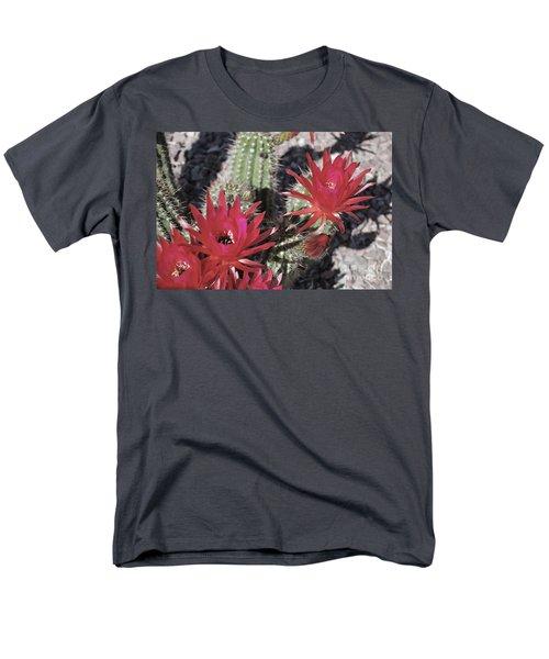Hedgehog Cactus Men's T-Shirt  (Regular Fit) by Donna Greene