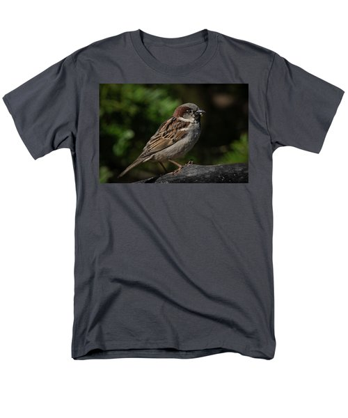 House Sparrow 2 Men's T-Shirt  (Regular Fit) by Kenneth Cole