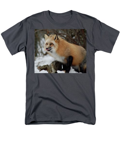 Men's T-Shirt  (Regular Fit) featuring the photograph Hungry Fox by Richard Bryce and Family