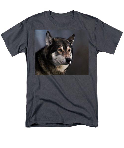 Husky Men's T-Shirt  (Regular Fit) by  Newwwman