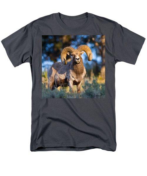 Keeping Watch Men's T-Shirt  (Regular Fit) by CR  Courson