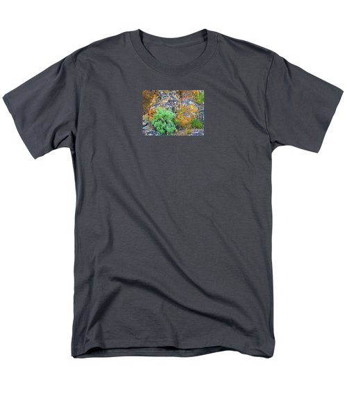 Men's T-Shirt  (Regular Fit) featuring the photograph Lichen Rainbow   by Michele Penner