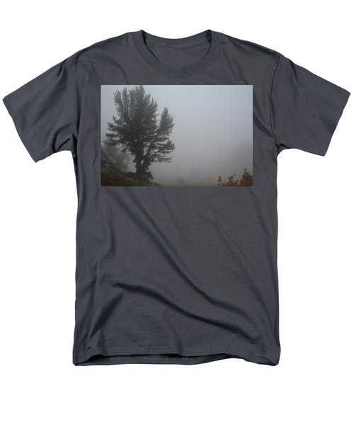 Limber Pine In Fog Men's T-Shirt  (Regular Fit) by Jenessa Rahn