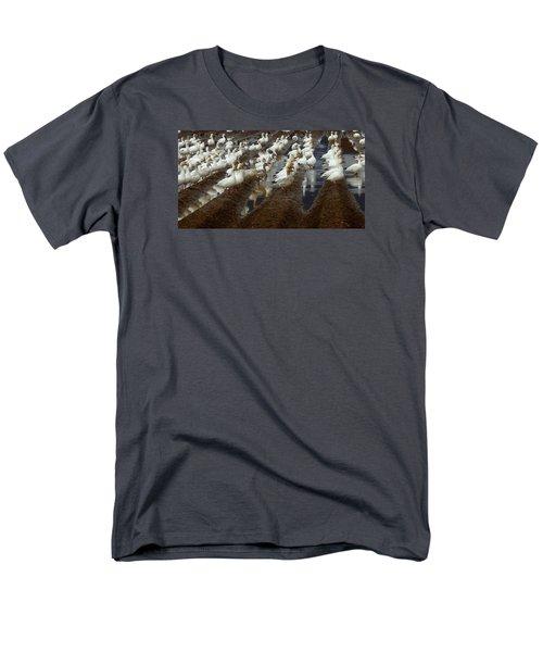 Lines Of Snowgeese Men's T-Shirt  (Regular Fit) by Karen Molenaar Terrell