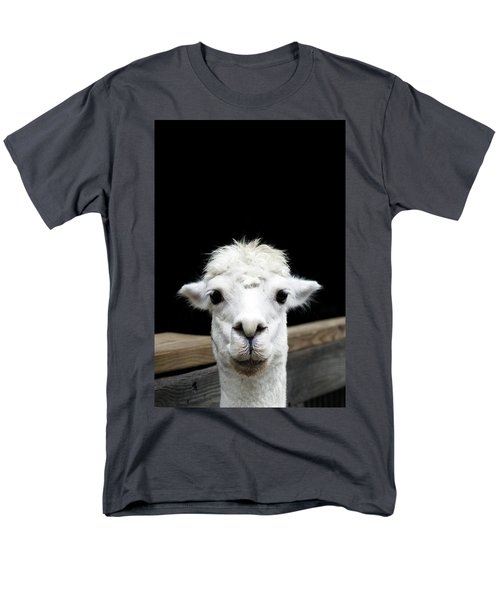 Llama Men's T-Shirt  (Regular Fit) by Lauren Mancke