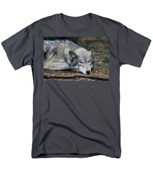 Men's T-Shirt  (Regular Fit) featuring the photograph Lying In Wait by Laddie Halupa