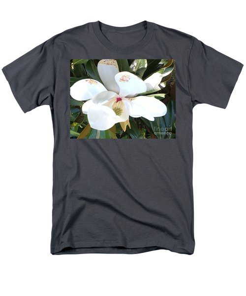 Magnolia Tree Bloom Men's T-Shirt  (Regular Fit) by Debra Crank