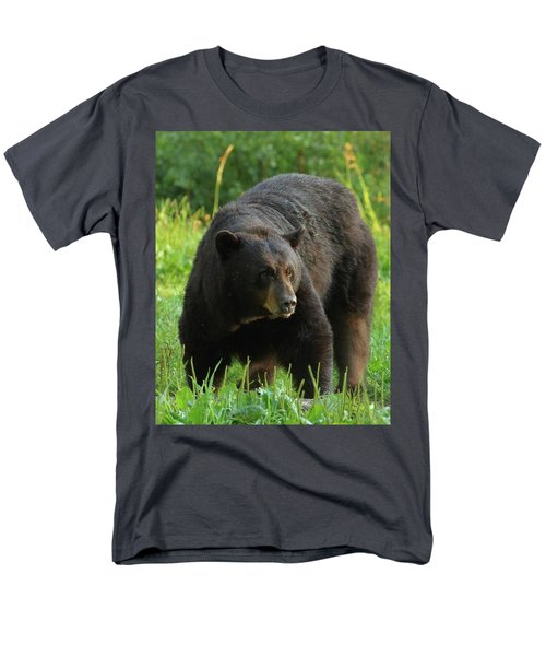 Men's T-Shirt  (Regular Fit) featuring the photograph Male Black Bear In Late Light by Coby Cooper