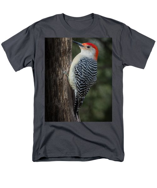 Male Red-bellied Woodpecker Men's T-Shirt  (Regular Fit) by Kenneth Cole