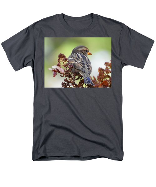 Morning Rest Men's T-Shirt  (Regular Fit) by Betty-Anne McDonald