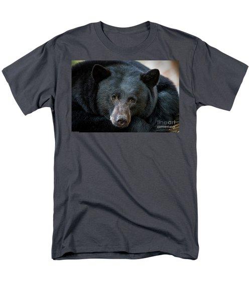 Mother Bear Men's T-Shirt  (Regular Fit) by Mitch Shindelbower