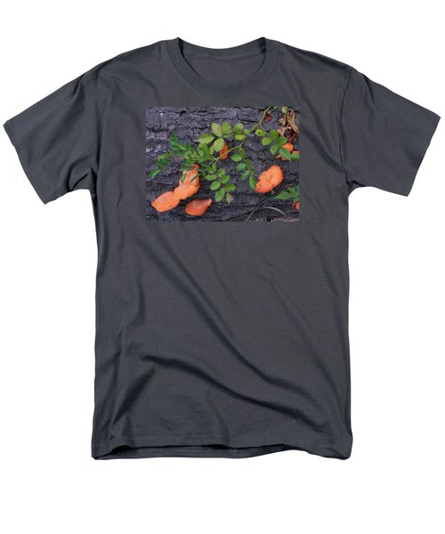 Nature's Beauty Men's T-Shirt  (Regular Fit) by Christine Lathrop