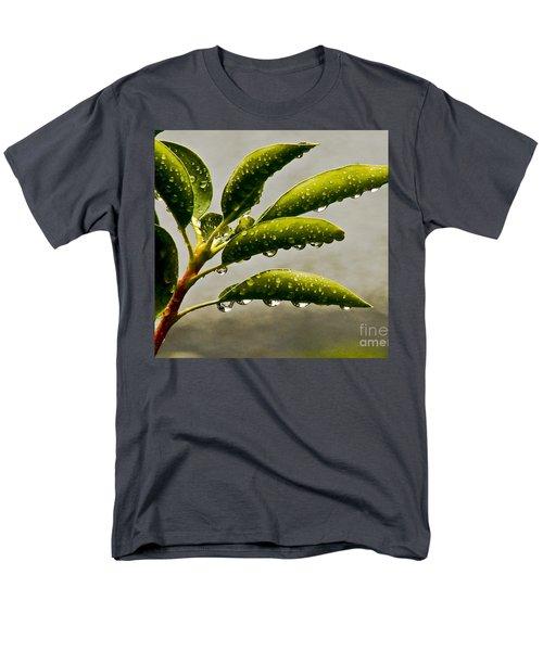 Early Morning Raindrops Men's T-Shirt  (Regular Fit) by Carol F Austin