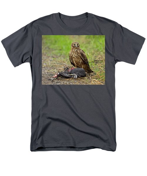 Northern Harrier Men's T-Shirt  (Regular Fit) by Doug Herr