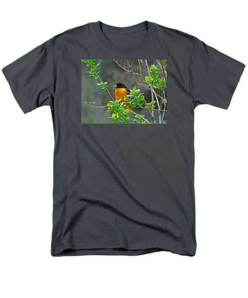 Oriole On The Lilac Men's T-Shirt  (Regular Fit) by Larry Capra