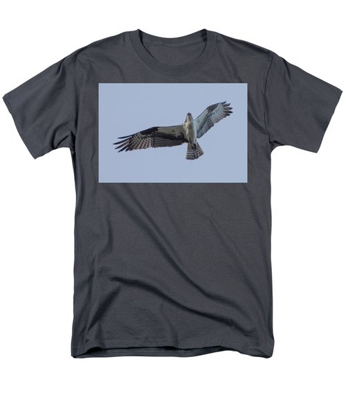 Osprey Men's T-Shirt  (Regular Fit) by Keith Boone