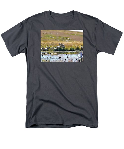 Men's T-Shirt  (Regular Fit) featuring the photograph Pastoral Sheep By Pond by Deborah Moen
