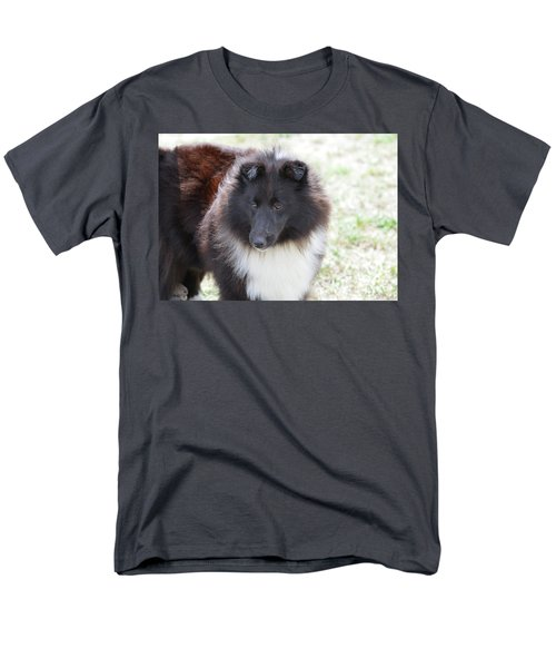 Pretty Black And White Sheltie Dog Men's T-Shirt  (Regular Fit) by DejaVu Designs
