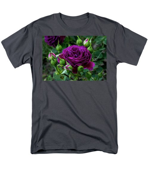 Purple Rose Men's T-Shirt  (Regular Fit) by Alex Galkin