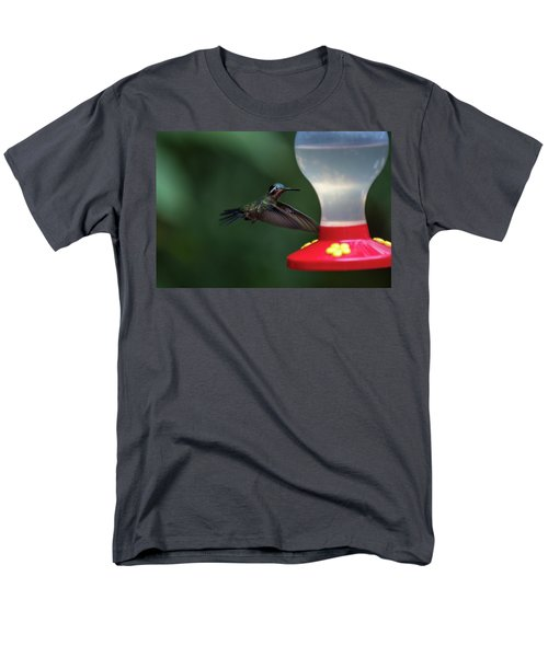 Purple-throated Mountain Gem Men's T-Shirt  (Regular Fit) by James David Phenicie