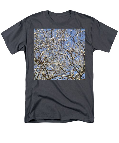 Pussywillows Bursting To Life Men's T-Shirt  (Regular Fit) by Roger Swezey