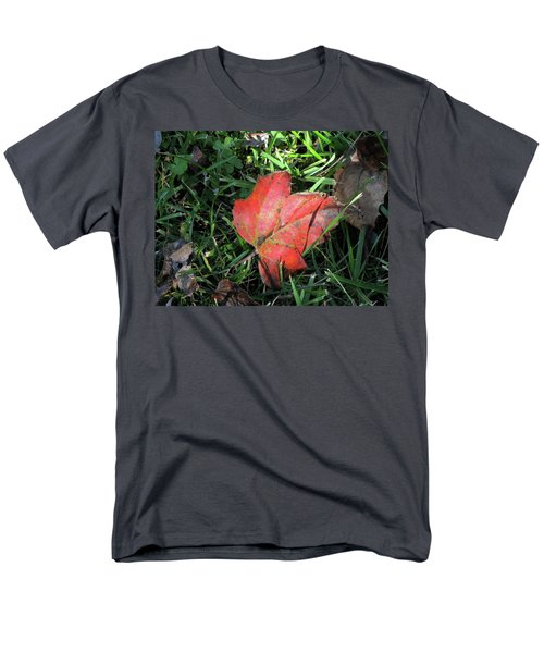 Red Leaf Against Green Grass Men's T-Shirt  (Regular Fit) by Michele Wilson