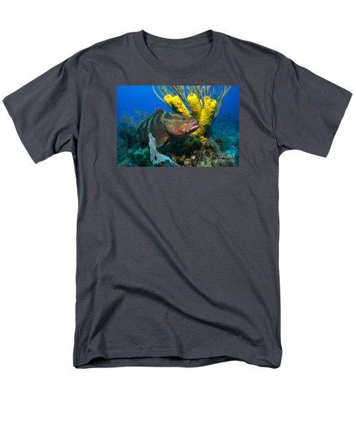 Reef Denizon Men's T-Shirt  (Regular Fit) by Aaron Whittemore