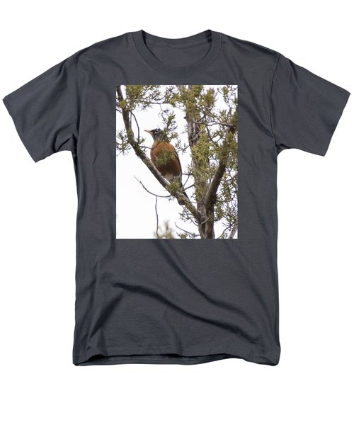 Robin On The Lookout Men's T-Shirt  (Regular Fit) by Laura Pratt