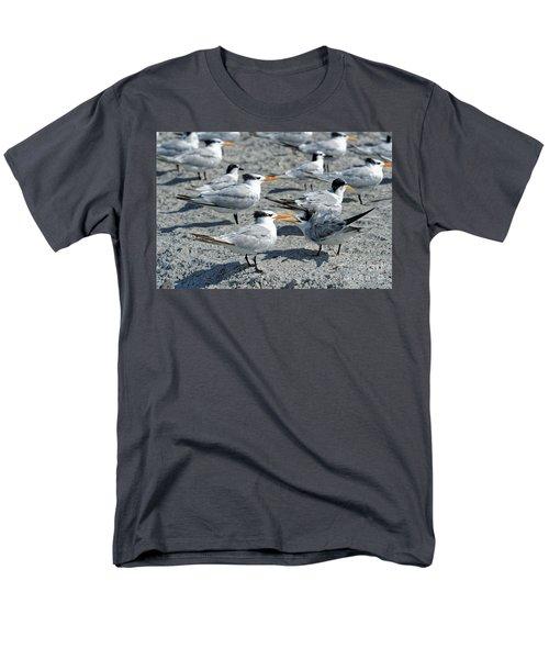 Royal Terns Men's T-Shirt  (Regular Fit) by Paul Mashburn