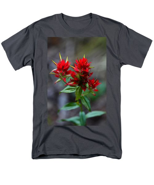 Scarlet Red Indian Paintbrush Men's T-Shirt  (Regular Fit) by Karon Melillo DeVega