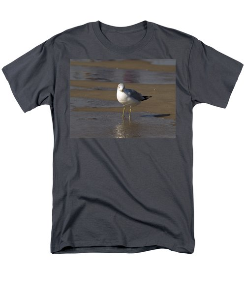 Seagull Standing Men's T-Shirt  (Regular Fit) by Tara Lynn