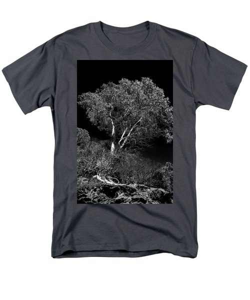 Shoreline Tree Men's T-Shirt  (Regular Fit) by Roger Mullenhour