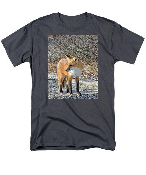 Sly Little Fox Men's T-Shirt  (Regular Fit) by Sami Martin