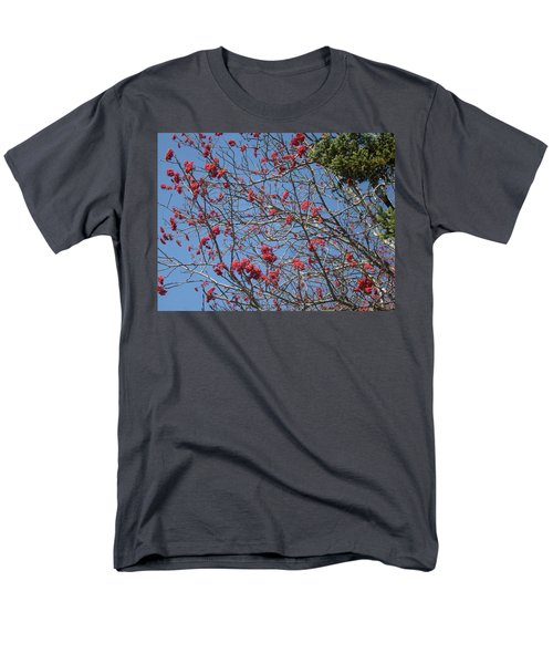 Smokies 8 Men's T-Shirt  (Regular Fit) by Val Oconnor