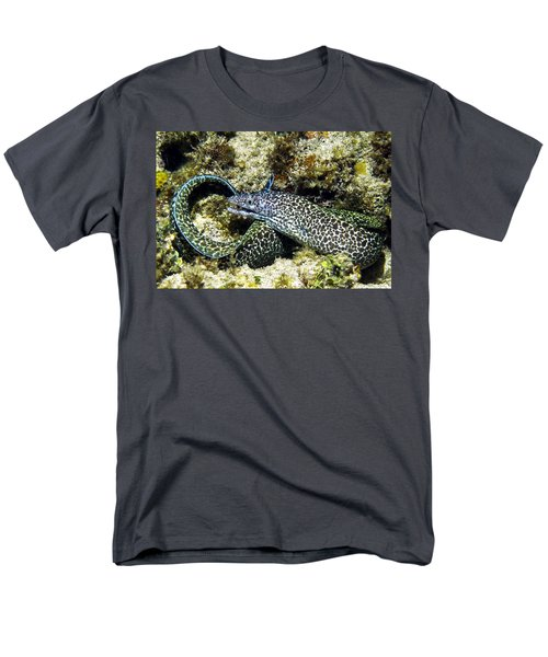 Spotted Moray Eel Men's T-Shirt  (Regular Fit) by Amy McDaniel