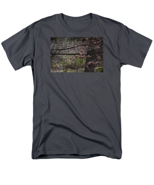 Spring Crabapple Men's T-Shirt  (Regular Fit) by Morris  McClung