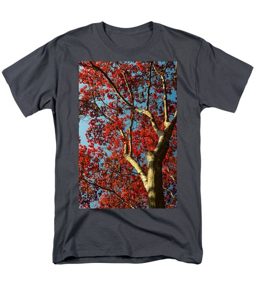 Men's T-Shirt  (Regular Fit) featuring the photograph Spring Maple by Dana Sohr