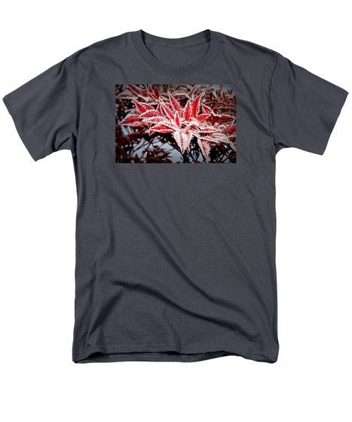 Star Leaves Men's T-Shirt  (Regular Fit) by Katie Wing Vigil