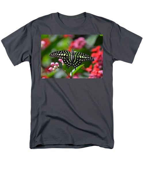 Tailed Jay4 Men's T-Shirt  (Regular Fit) by Ronda Ryan