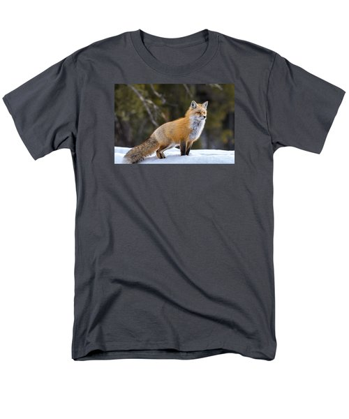Men's T-Shirt  (Regular Fit) featuring the photograph Totally Foxy by Yeates Photography