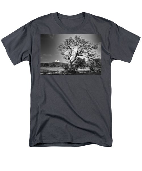 Tree Men's T-Shirt  (Regular Fit) by Charuhas Images