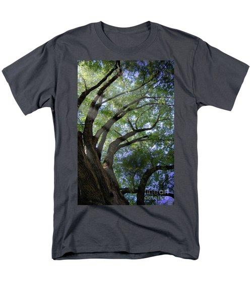 Tree Rays Men's T-Shirt  (Regular Fit) by Brian Jones