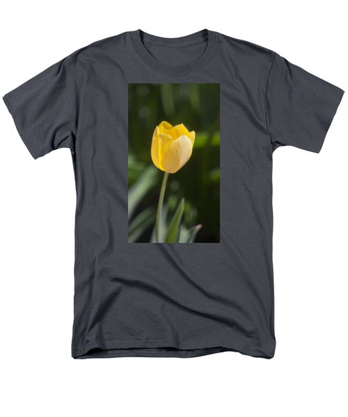 Tulip Portrait Men's T-Shirt  (Regular Fit) by Morris  McClung