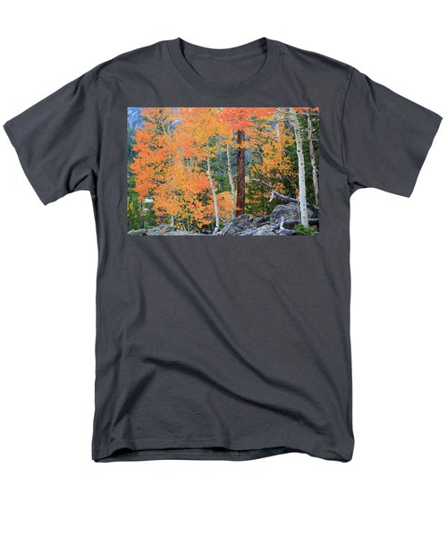 Twisted Pine Men's T-Shirt  (Regular Fit) by David Chandler