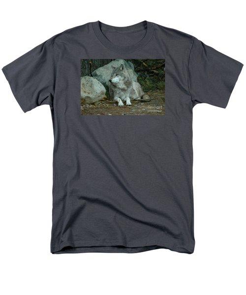 Watchful Wolf Men's T-Shirt  (Regular Fit) by Sandra Updyke