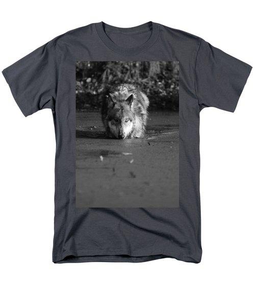 Water Wolf I Men's T-Shirt  (Regular Fit) by Shari Jardina
