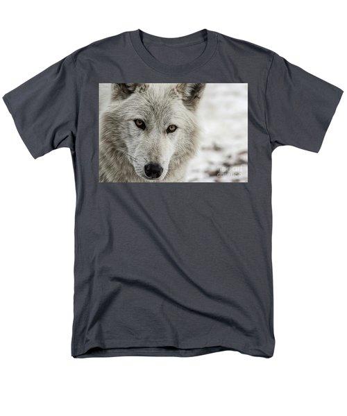 White Wolf II Men's T-Shirt  (Regular Fit) by Brad Allen Fine Art
