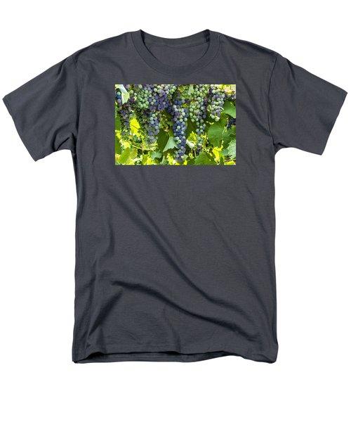 Wine Grape Colors Men's T-Shirt  (Regular Fit) by Teri Virbickis
