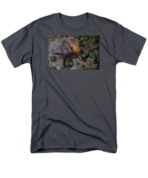 Orange And Purple Starfish II Men's T-Shirt  (Regular Fit) by Chuck Flewelling