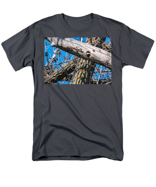 Men's T-Shirt  (Regular Fit) featuring the photograph Yellow-shafted Northern Flicker Nest Building by Edward Peterson